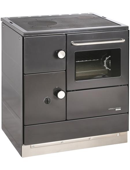 HAAS & SOHN Festbrennstoffherd »HA 75.5-A«, 7,5 kW