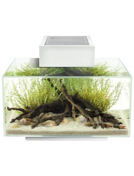 FL Edge 2.0 Aquarium Set