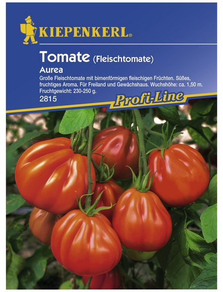 KIEPENKERL Fleischtomate lycopersicum Solanum »Aurea«
