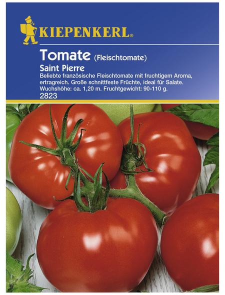 KIEPENKERL Fleischtomate lycopersicum Solanum »Saint Pierre«