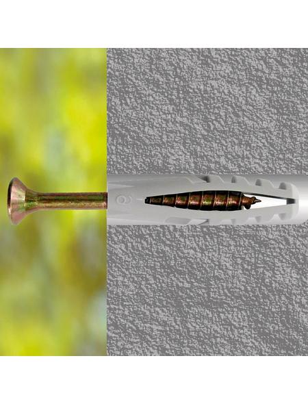 CONNEX Flossendübel, Polyamid (PA), 100 Stück, 8 x 40 mm