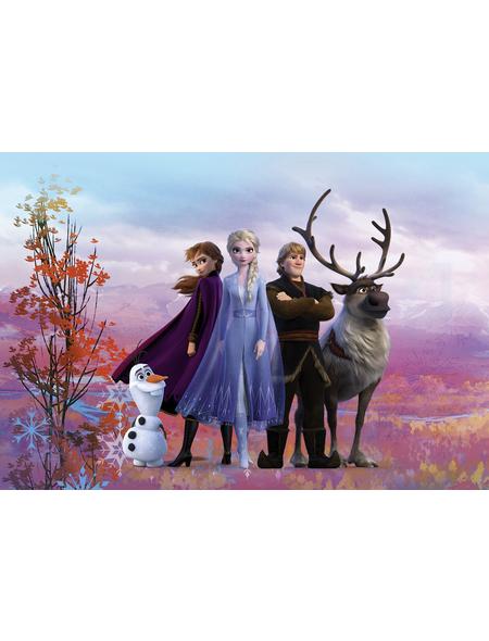 KOMAR Foto-Papiertapete »Frozen Iconic«, Breite 368 cm, inkl. Kleister