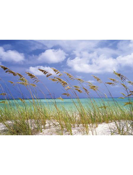 KOMAR Foto-Papiertapete »Ocean Breeze«, Breite 368 cm, inkl. Kleister
