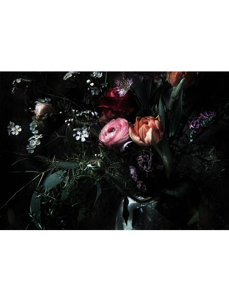 KOMAR Foto-Papiertapete »Still Life«, Breite 368 cm, inkl. Kleister