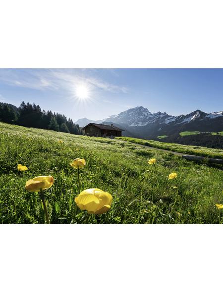 KOMAR Foto-Vliestapete »Alpenglück«, Breite 400 cm, seidenmatt