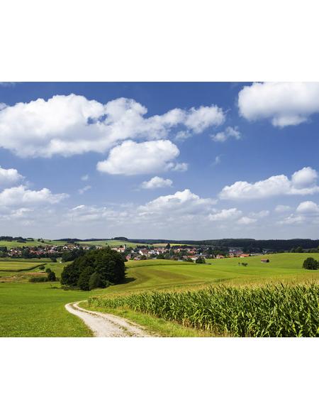 KOMAR Foto-Vliestapete »Bayrische Idylle«, Breite 350 cm, seidenmatt