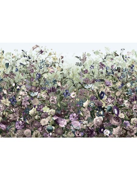 KOMAR Foto-Vliestapete »Botanica«, Breite 368 cm, inkl. Kleister