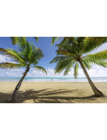 KOMAR Foto-Vliestapete »Caribbean Days II«, Breite 450 cm, seidenmatt