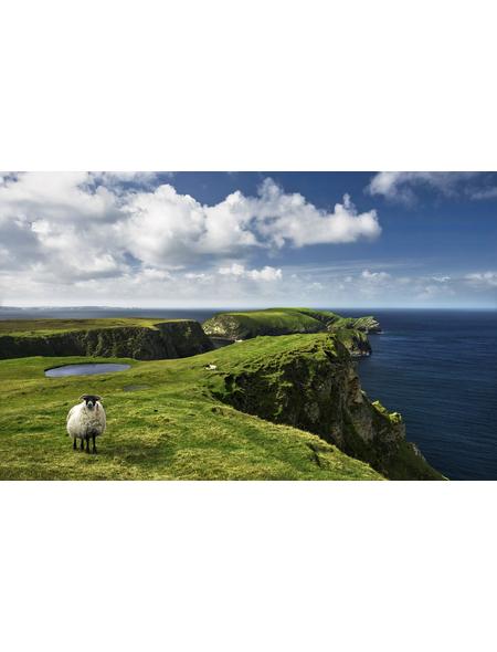 KOMAR Foto-Vliestapete »Green Ireland«, Breite 450 cm, seidenmatt
