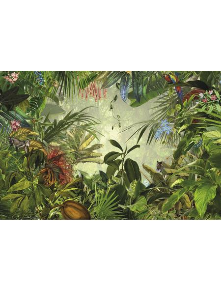 KOMAR Foto-Vliestapete »Into The Wild«, Breite 368 cm, inkl. Kleister