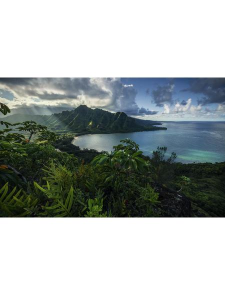 KOMAR Foto-Vliestapete »Jurassic Island «, Breite 450 cm, seidenmatt