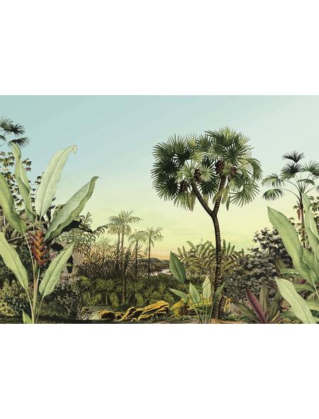 KOMAR Foto-Vliestapete »Oasis«, Breite 350 cm, seidenmatt