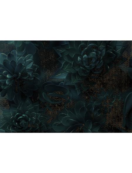 KOMAR Foto-Vliestapete »Ombres«, Breite 400 cm, seidenmatt