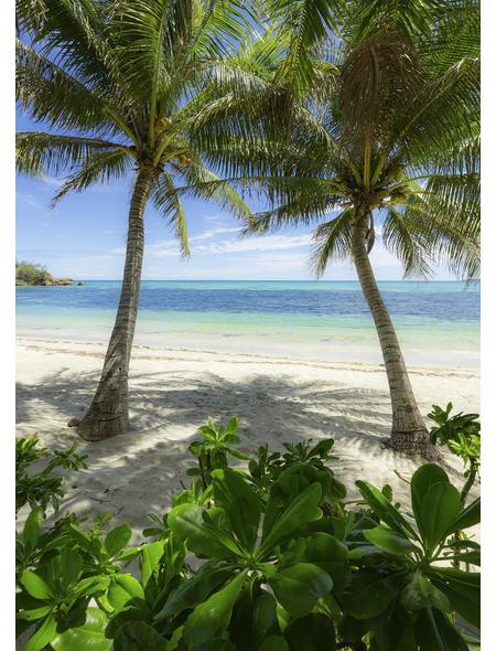 KOMAR Foto-Vliestapete »Palmy Beach«, Breite 200 cm, seidenmatt
