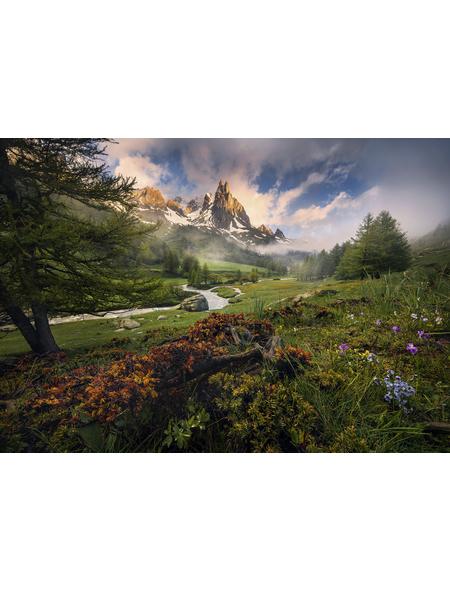 KOMAR Foto-Vliestapete »The Last Paradise«, Breite 400 cm, seidenmatt
