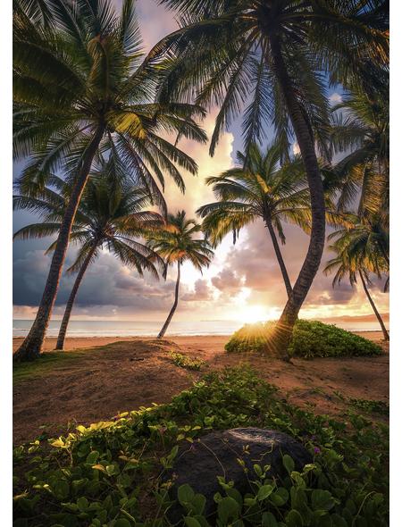 KOMAR Foto-Vliestapete »Vertical Paradise«, Breite 200 cm, seidenmatt