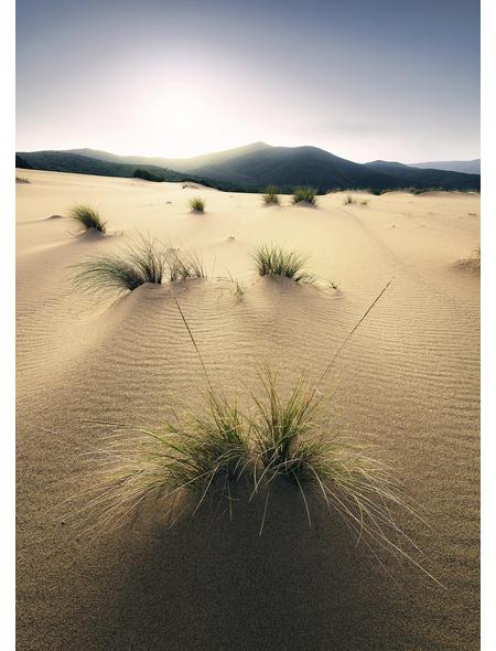 KOMAR Foto-Vliestapete »Vivid Dunes«, Breite 200 cm, seidenmatt