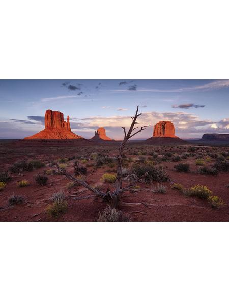 KOMAR Foto-Vliestapete »Wild West Heroes«, Breite 450 cm, seidenmatt
