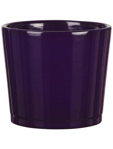 SCHEURICH Frühlingstopf »SPRING«, Höhe: 10,5 cm, violett, Keramik