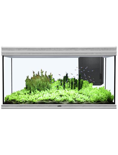 Fusion 120x50 2.0 Aquarium