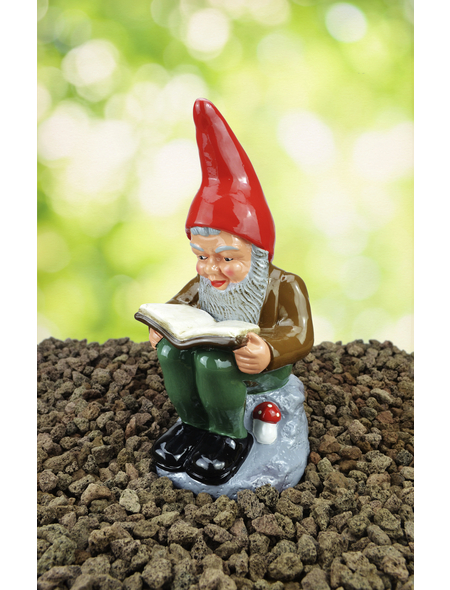 HEISSNER Gartenzwerg, der Bücherwurm Wilhelm, Höhe: 30  cm, Keramik, bunt