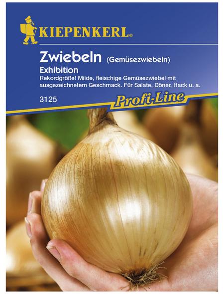 KIEPENKERL Gemüsezwiebel cepa Allium