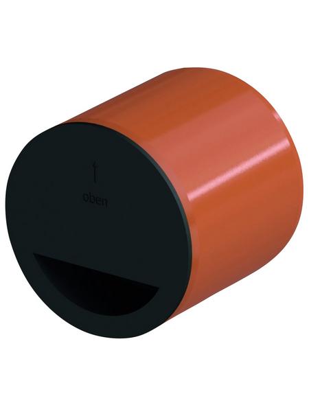 ACO Geruchsverschluss, BxL: 10 x 10 cm, Kunststoff