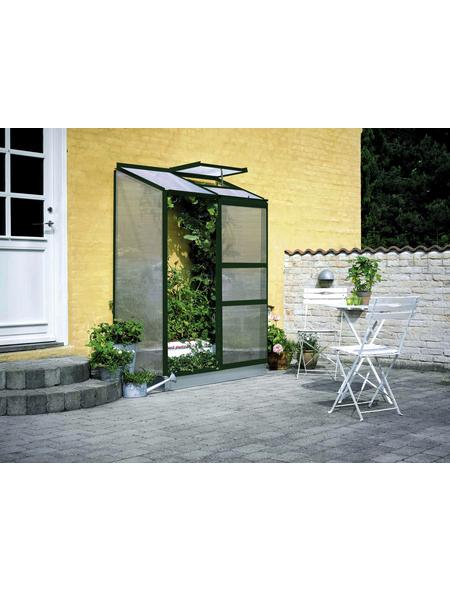 HALLS Gewächshaus »Altan«, 0,91 m², Kunststoff/Aluminium