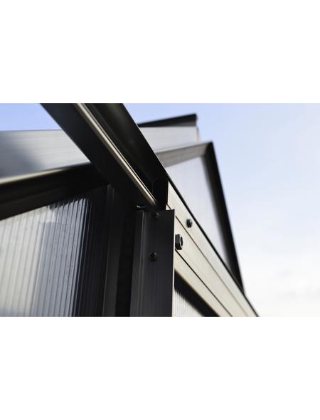 VITAVIA Gewächshaus »Apollo«, B x L x H: 195  x 198,8  x 207,4  cm, Aluminium/Polycarbonat (PC)