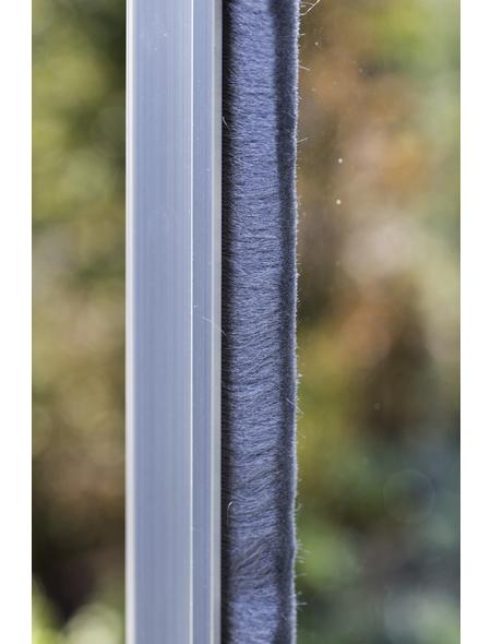 VITAVIA Gewächshaus »Apollo«, B x L x H: 195  x 261  x 207,4  cm, Aluminium/Polycarbonat (PC)