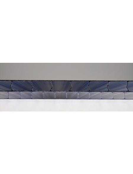 VITAVIA Gewächshaus »Eos«, B x L x H: 197,7  x 303,6  x 195,9  cm