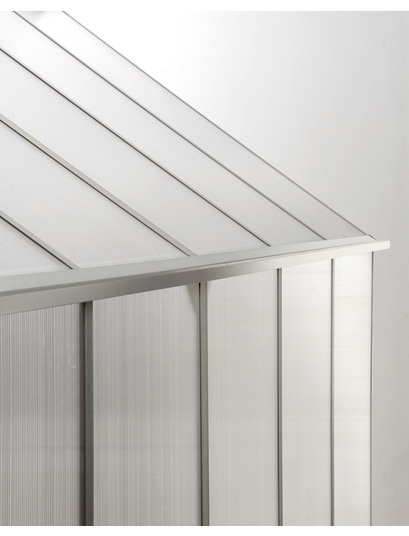 VITAVIA Gewächshaus »Eos«, BxLxH: 197,7 x 303,6 x 195,9 cm