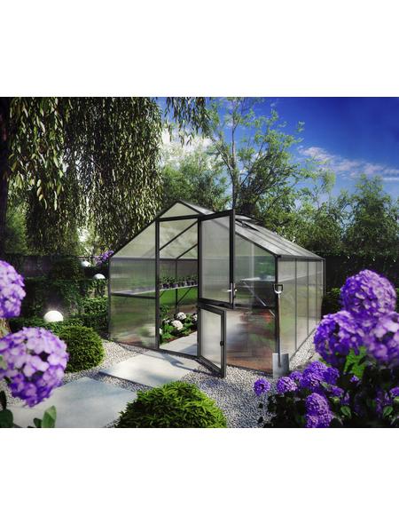 KGT Gewächshaus »Orchidee«, B x L x H: 297  x 429  x 233  cm, Aluminium/Polycarbonat (PC)
