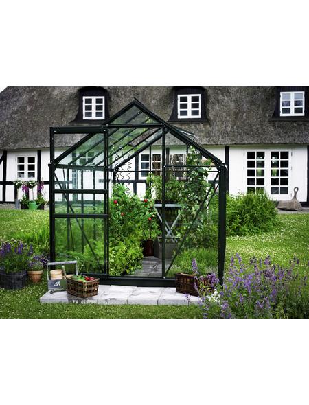 Gewächshaus »popular«, B x L x H: 193  x 319  x 196  cm, Aluminium/Glas