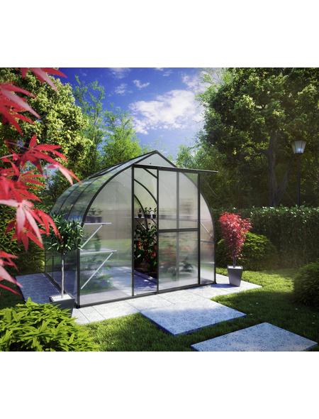 KGT Gewächshaus »Rhodo«, B x L x H: 227  x 301  x 204  cm, Aluminium/Polycarbonat (PC)
