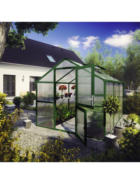 KGT Gewächshaus »Tulpe«, B x L x H: 233  x 323  x 215  cm