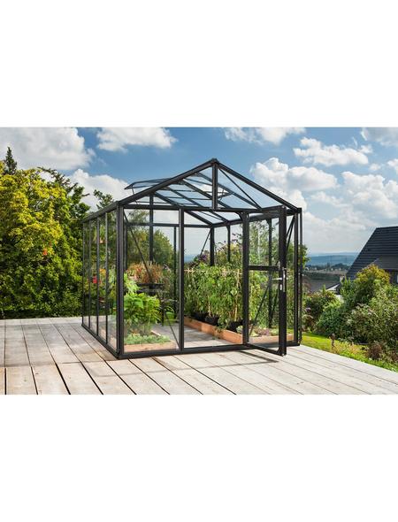VITAVIA Gewächshaus »Zeus«, B x L x H: 258,4  x 316,4  x 250,4  cm, Aluminium/Glas