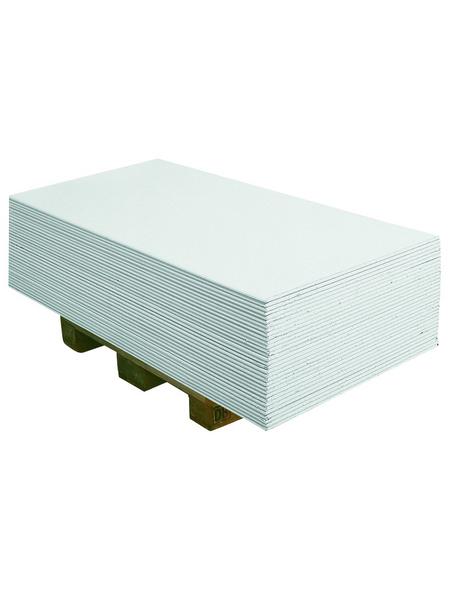 Gipskartonplatte BxL: 600x2000 mm
