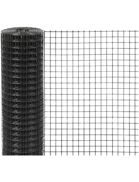 MR. GARDENER Gitter, HxL: 100 x 500 cm, anthrazit