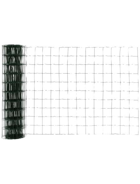 FLORAWORLD Gitterzaun, HxL: 100 x 2000 cm, grün