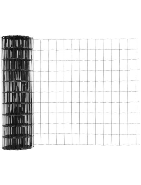 FLORAWORLD Gitterzaun, HxL: 100 x 2500 cm, anthrazit