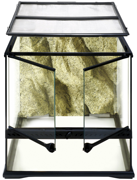 EXO TERRA Glasterrarium, 45 x 45 x 45 cm, inklusive Rückwand