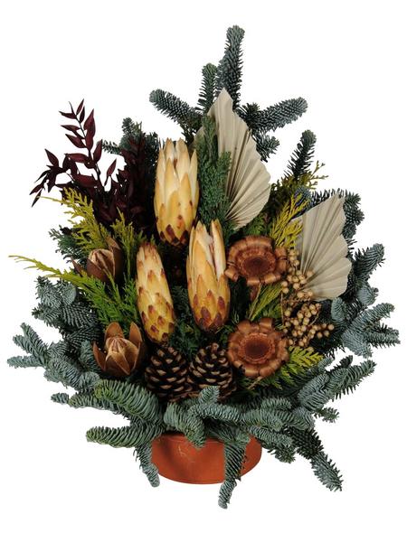 Grabschale, Tanne, Ø 15 cm, garniert, natur