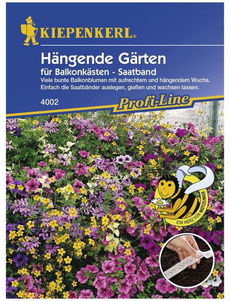 KIEPENKERL Hängende Gärten Saatband, Samen, Blüte: mehrfarbig