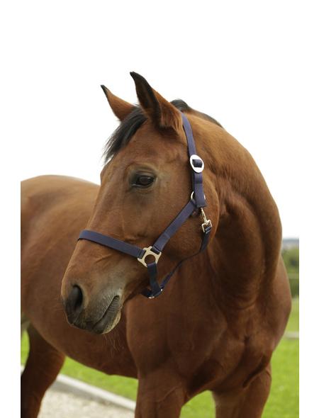Covalliero Halfter »Hippo«, passend für Pony, Gr. 1, marine