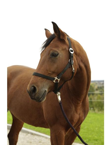 Covalliero Halfter »Hippo«, passend für Pony, Gr. 1, schwarz