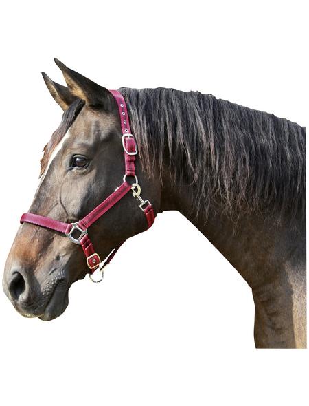 Covalliero Halfter »Mustang«, passend für , Gr. 2, rot/schwarz