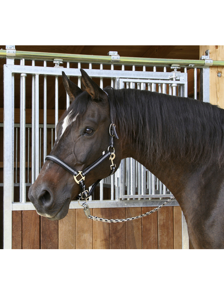 Covalliero Halfter »Mustang«, passend für , Gr. 3, schwarz/silberfarben