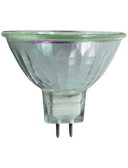 CASAYA Halogen-Leuchtmittel, 50 W, GU5.3, warmweiß
