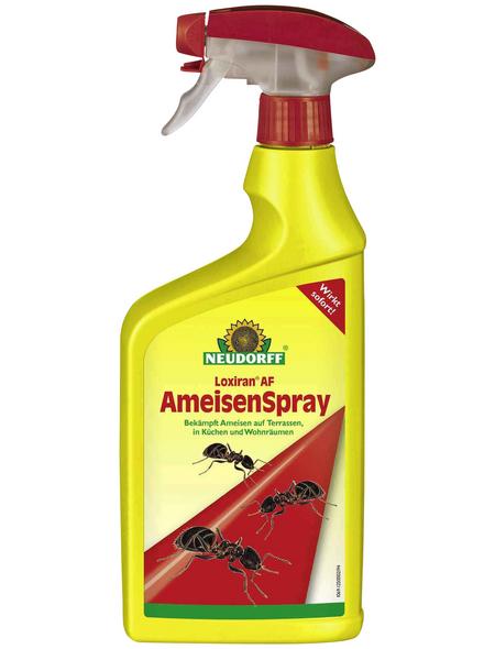 NEUDORFF Haushaltsinsektizide »Loxiran AF Ameisenspray«, Spray, 750 ml